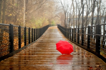 Red-Umbrella-In-Rainy-Day-wide-i
